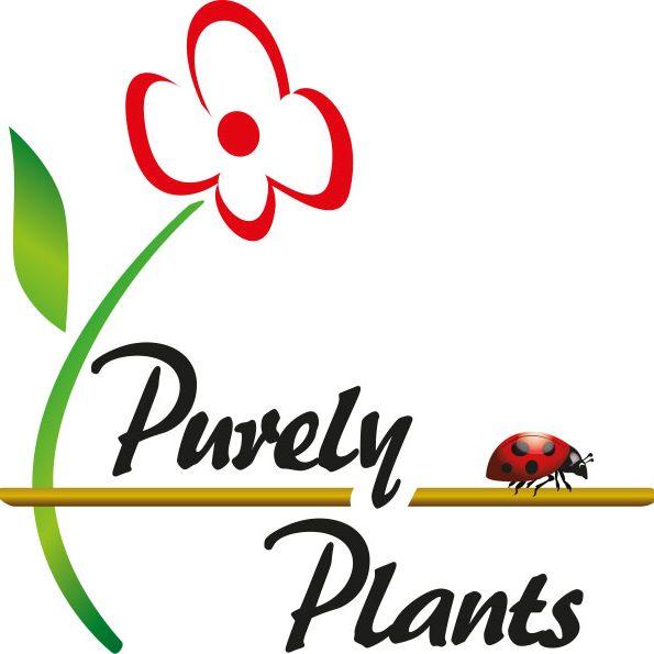 Purely Plants